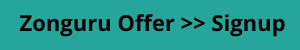 Zonguru offer